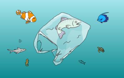 Plast kolonizuje naši planetu I.část – Plasty v oceánech